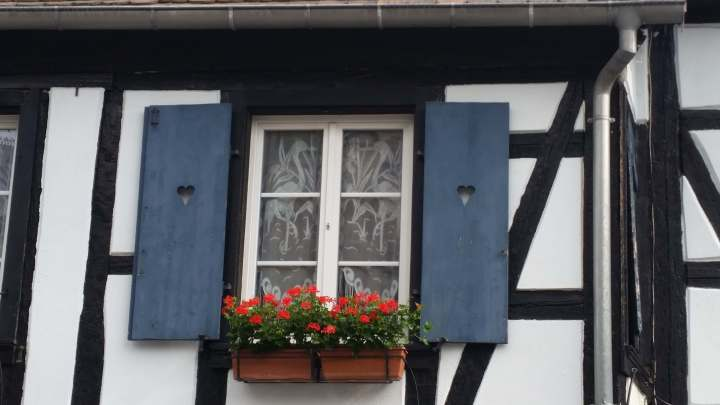 blue window shutters obernai alsace france