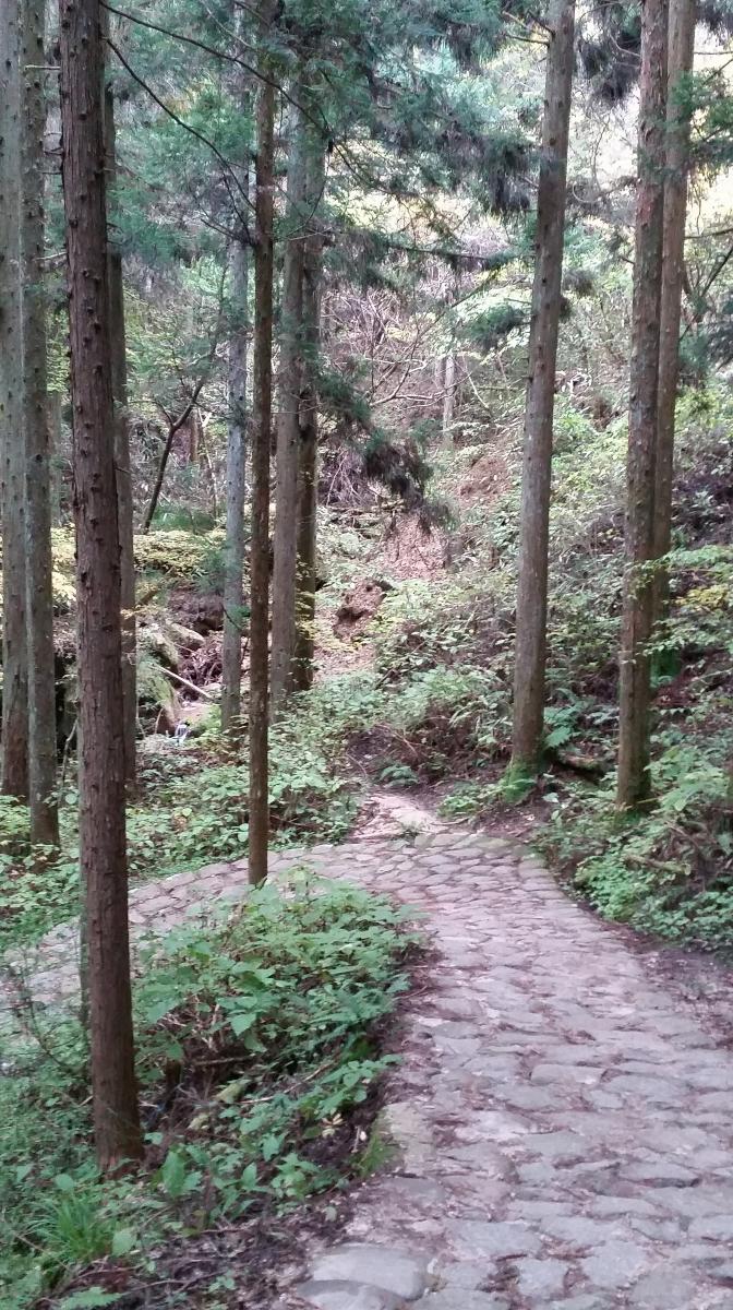 nakasendo road kisoji hiking in japan tsumago to magome