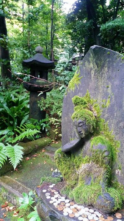 japanese garden japan culture