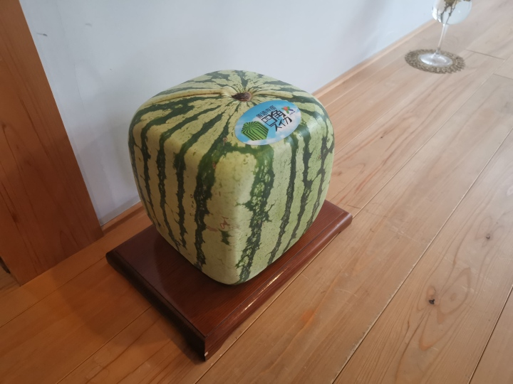 square watermelon japan